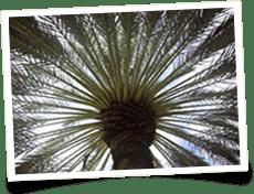 Gainesville FL Property Management